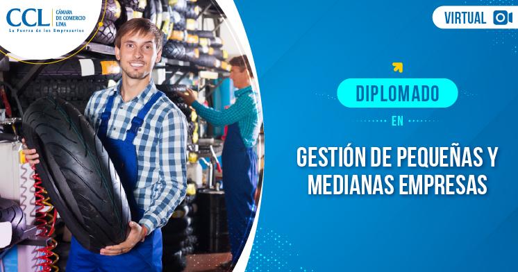 Diplomado Online en Gestión de Pequeñas y Medianas Empresas