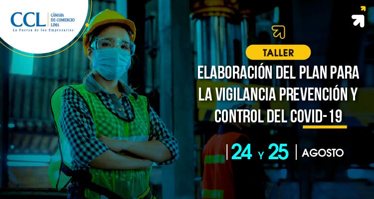 Taller: Elaboración del Plan para la Vigilancia Prevención y Control del Covid-19