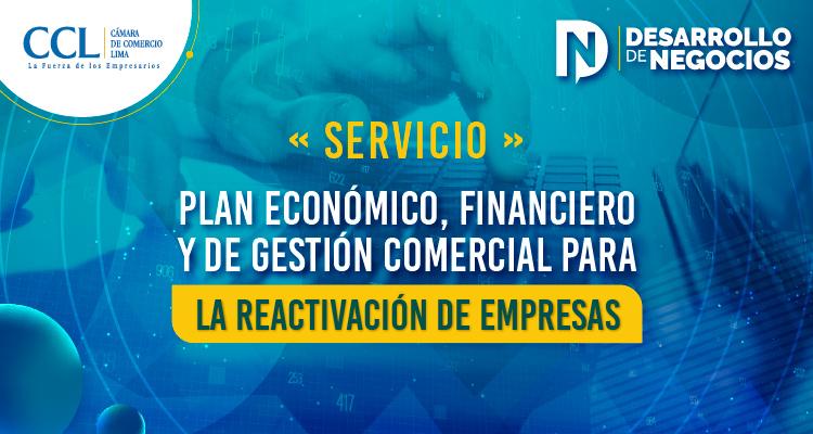 Servicio de Plan Económico Financiero y de Gestiòn de Comercial para la Reactivacion de Empresas