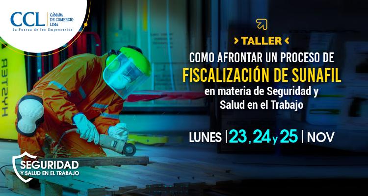 Taller: Como afrontar un proceso de Fiscalización de SUNAFIL en materia de Seguridad y Salud en el Trabajo