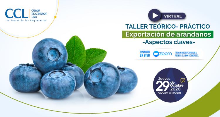TALLER TEORICO – PRÁCTICO: EXPORTACION DE ARÁNDANOS – ASPECTOS CLAVES 2020