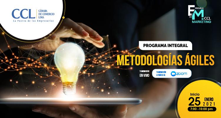 PROGRAMA INTEGRAL EN METODOLOGIAS AGILES
