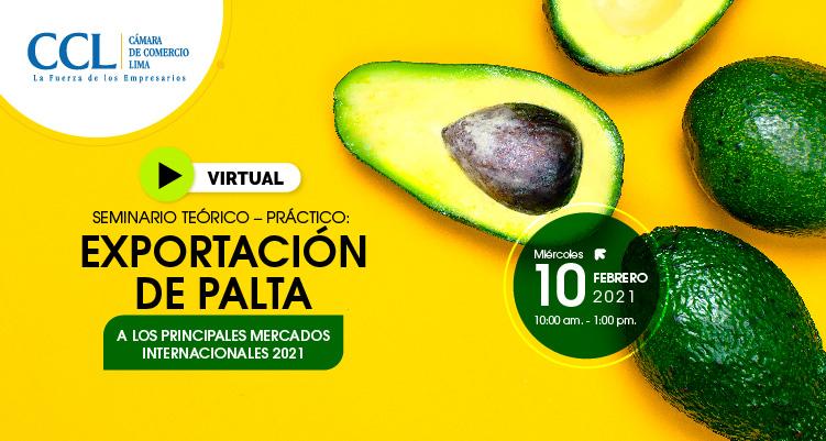 SEMINARIO TEÓRICO-PRÁCTICO: EXPORTACIÓN DE PALTAS A LOS PRINCIPALES MERCADOS INTERNACIONALES 2021