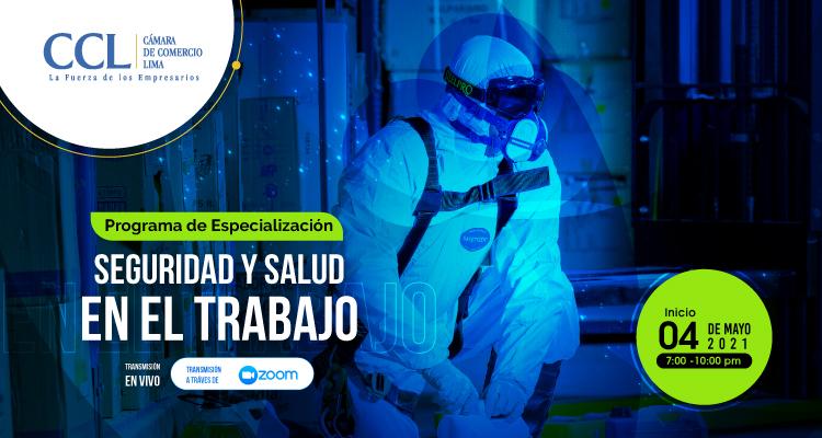 PROGRAMA DE ESPECIALIZACION EN SEGURIDAD Y SALUD EN EL TRABAJO